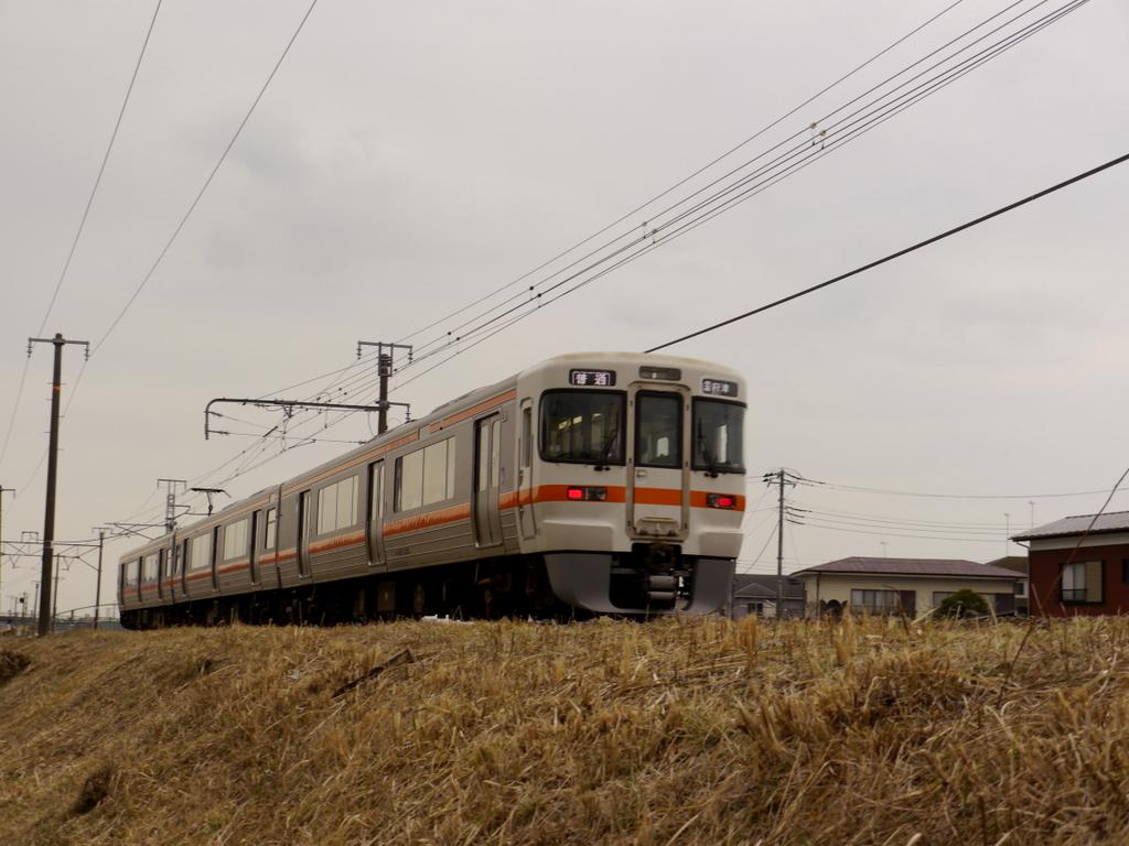 国府津方面の電車が土手を走ってきた