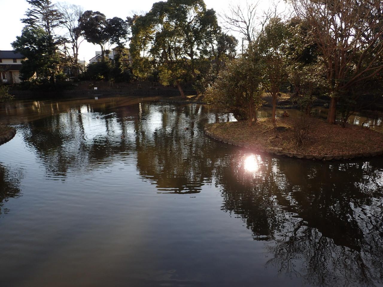 平家池の眺め