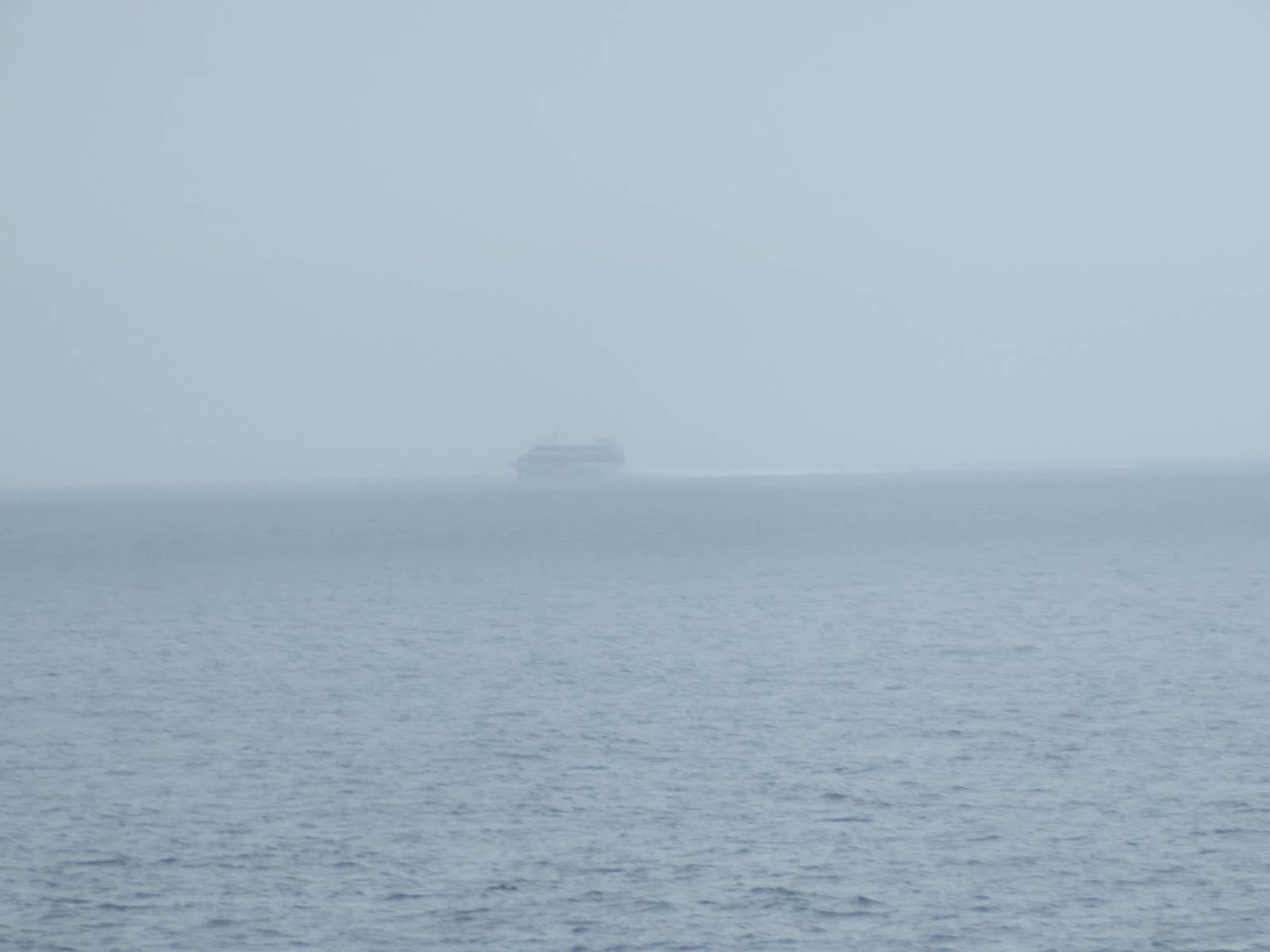船影を確認